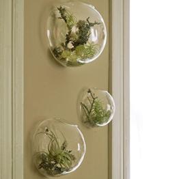 EssenceLiving Set von 3 Wandblasen Terrarien Indoor Pflanzen Pflanzer Vase Wand montiert Mini Aquarium Wanddekor - 1