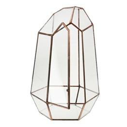 Irreguläre Mini Glas Terrarium Geometrisches Glas Sukkulente Pflanzen Pflanzgefäß Deko - 16 x 16 x 25cm - 1