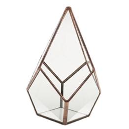 Luft Pflanzer Mini Glas Terrarium Geometrisches Glas Sukkulente Pflanzen Pflanzgefäß Deko 12x12x17cm - Kupfer - 1