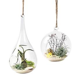 Mkouo 2Stück zum Aufhängen Terrarium Glas Vase Flower Air Pflanzgefäß Container Home Office Hochzeit Dekoration Herz Form–Orb und Tropfenform - 1