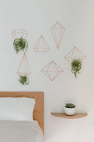 Umbra Prisma Geometrische Wanddekoration – Deko zum Aufhängen an Wand und Decke oder als Tischdekoration Verwendbar, Set mit 6 Prisma Hälften, Metall / Kupfer - 9