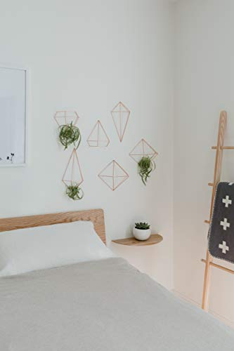 Umbra Prisma Geometrische Wanddekoration – Deko zum Aufhängen an Wand und Decke oder als Tischdekoration Verwendbar, Set mit 6 Prisma Hälften, Metall / Kupfer - 10