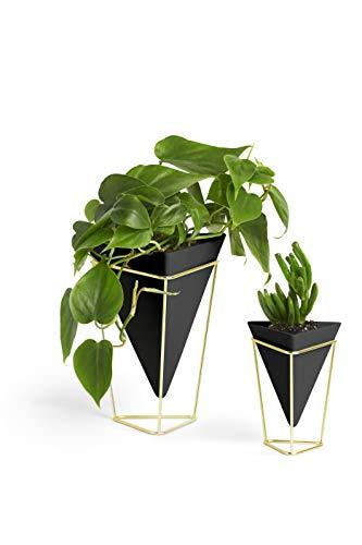 Umbra Trigg Übertopf und Wandvase für Zimmerpflanzen, Sukkulenten, Luftpflanzen, Kakteen, Kunstpflanzen und Mehr, 2-er Set - 1