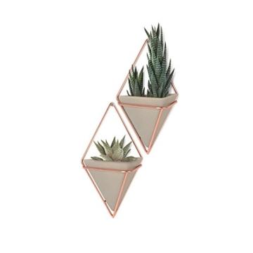 Umbra Trigg Wandvase & Geometrische Deko – Übertopf Für Zimmerpflanzen, Sukkulenten, Luftpflanzen, Kakteen, Kunstpflanzen und Mehr, Metall, Beton/Kupfer, Klein, 2 - 3