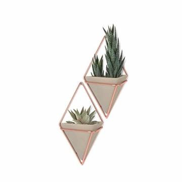 Umbra Trigg Wandvase & Geometrische Deko – Übertopf Für Zimmerpflanzen, Sukkulenten, Luftpflanzen, Kakteen, Kunstpflanzen und Mehr, Metall, Beton/Kupfer, Klein, 2 - 1