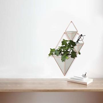 Umbra Trigg Wandvase & Geometrische Deko – Übertopf Für Zimmerpflanzen, Sukkulenten, Luftpflanzen, Kakteen, Kunstpflanzen und Mehr, Metall, Beton/Kupfer, Klein, 2 - 7