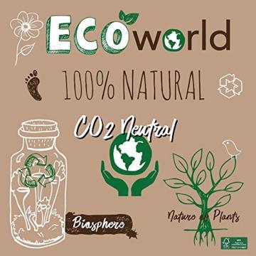 Ecoworld Tillandsien, Luftpflanzen - 5 Stück - 5 Verschiedene Pflanzen + Dekoratives Holz - 4