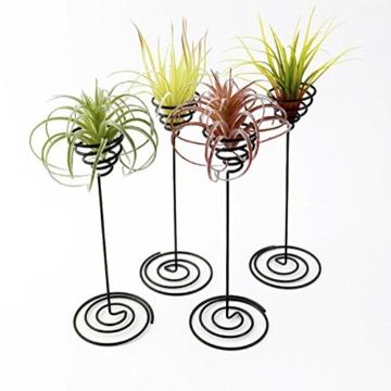 hetoco Air behältermantel Tischplatte Pflanzgefäß Pflanzen Ständer Halter Air Tillandsien Übertopf Racks - 3 - 3