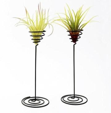 hetoco Air behältermantel Tischplatte Pflanzgefäß Pflanzen Ständer Halter Air Tillandsien Übertopf Racks - 3 - 4