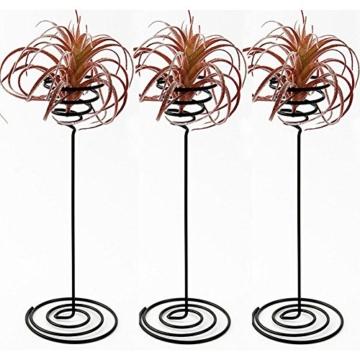 hetoco Air behältermantel Tischplatte Pflanzgefäß Pflanzen Ständer Halter Air Tillandsien Übertopf Racks - 3 - 1