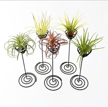 hetoco Air behältermantel Tischplatte Pflanzgefäß Pflanzen Ständer Halter Air Tillandsien Übertopf Racks - 3 - 5