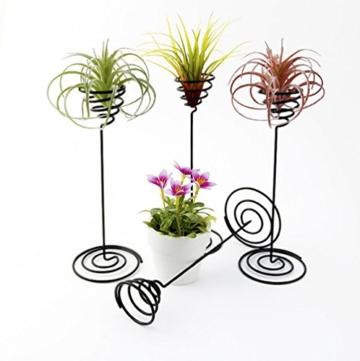 hetoco Air behältermantel Tischplatte Pflanzgefäß Pflanzen Ständer Halter Air Tillandsien Übertopf Racks - 3 - 6
