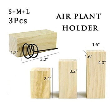 JUN 3PCS Air Halter Halter Container Tischplatte Pflanzgefäß Set in 3Größen, Holz Sockel Air Ständer Vase Topf, für Aufhängen Air, Kleine Tillandsien Mini Kaktus Faux Pflanzen Innen Wand Home Decor - 5