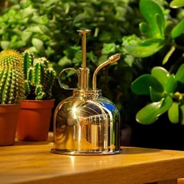 CKB LTD Water Mister 300 ml Vintage Style Premium Classic Indoor Sprühflasche Dekorativer Pflanznebel mit Pumpe Bewässerung Kürbis für Luftpflanzen, Orchideen und mehr - 6