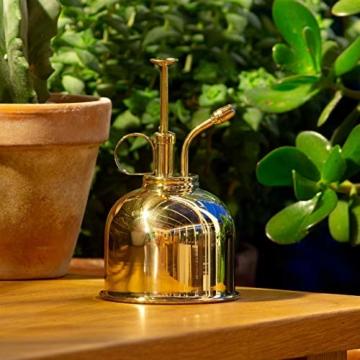 CKB LTD Water Mister 300 ml Vintage Style Premium Classic Indoor Sprühflasche Dekorativer Pflanznebel mit Pumpe Bewässerung Kürbis für Luftpflanzen, Orchideen und mehr - 7