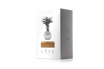 FLYTE Lyfe Dekoration, Glas, Weiß/eiche, 15.5 x 15.5 cm - 3