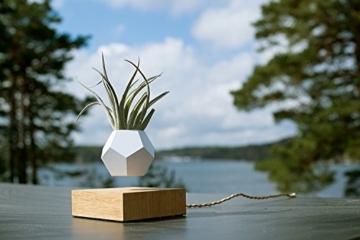 FLYTE Lyfe Dekoration, Glas, Weiß/eiche, 15.5 x 15.5 cm - 5